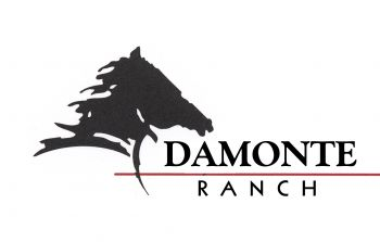 Damonte Ranch